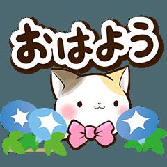 リボンと三毛猫【夏】