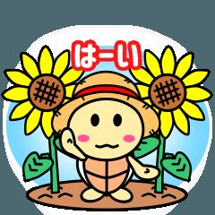 かめぽんの日常2(夏)