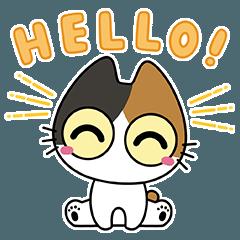 [LINEスタンプ] おめめぱっちり子猫
