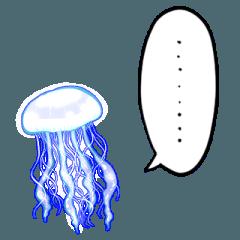 しゃべるクラゲ
