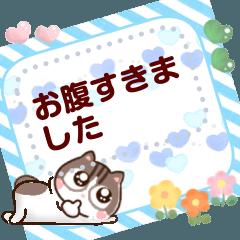 お花猫ちゃっぴー乙女メッセージスタンプ