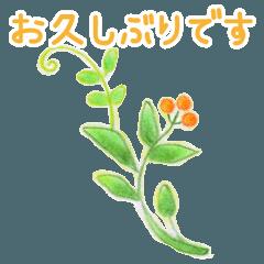 お花のイラストの丁寧言葉