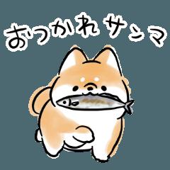 ダジャレを言う犬2