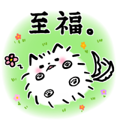 わがやのアイドル(?)ちゃちゃまるくん!