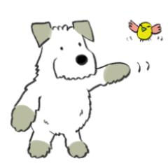 もさもさ犬の日常