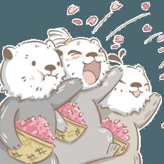 ラッコ三兄弟ー樹丸、草太、花子