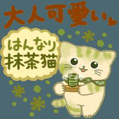大人可愛い❇︎はんなり抹茶色の猫❇︎