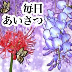 [LINEスタンプ] 可愛い過ぎないお花2 彼岸花と藤の花、蝶々