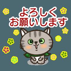 [LINEスタンプ] いたずら盛りネコの基本の挨拶編