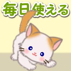 [LINEスタンプ] もふもふしっぽの子猫ちゃん 毎日使う言葉
