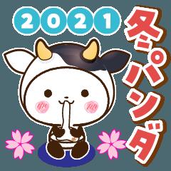 [LINEスタンプ] 【くっきり大きな文字!】2021年冬パンダ