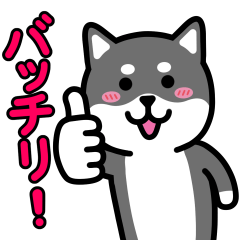[LINEスタンプ] いぬワールド 日常編