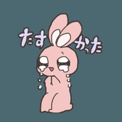 [LINEスタンプ] ほぼ泣きウサこ