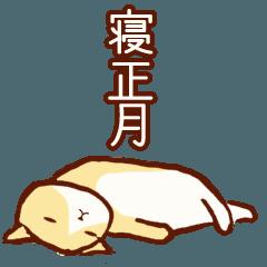 [LINEスタンプ] 寝正月にまつわるネコ