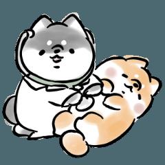 [LINEスタンプ] 健康を気づかう犬