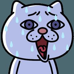 [LINEスタンプ] 飛び出す★ウザ~~い猫 セレクション