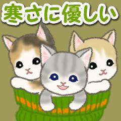 [LINEスタンプ] 寒さに優しいもこもこ猫ちゃんズ