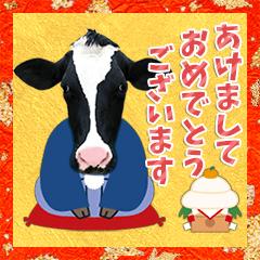 [LINEスタンプ] 丑年・可愛い牛から年末年始のご挨拶♪2021